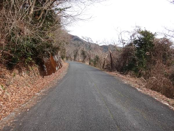 6 ちびっこバイクにベストな道.JPG