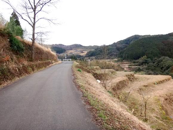 9 棚田の中の道.JPG